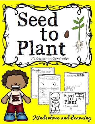 Seed to Plant Title
